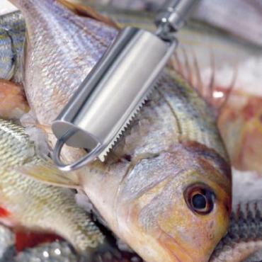 Fischentschupper